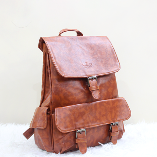 Gucci Backpack Brown Front